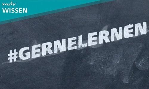 #GerneLernen (c) obs/Mitteldeutscher Rundfunk/MDR WISSEN - Schulfuchs.de